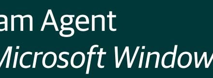 Veeam Agent for Windows – Basic Setup